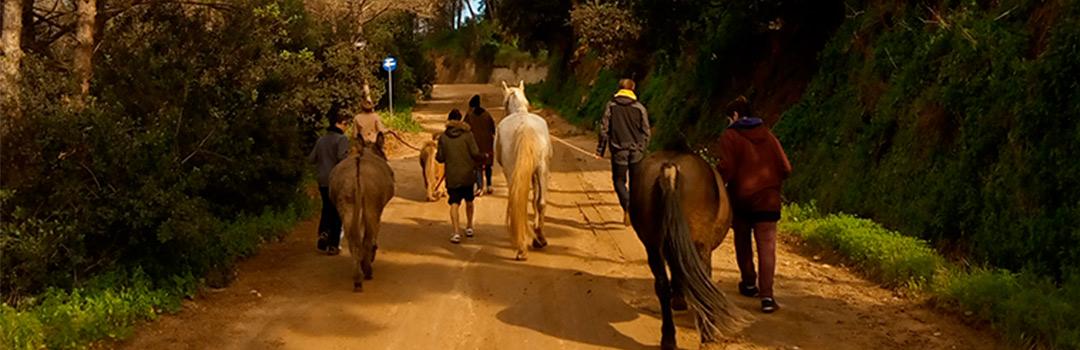 voluntarios con caballos en proyecto de ayuda a niños con equinoterapia en Badalona