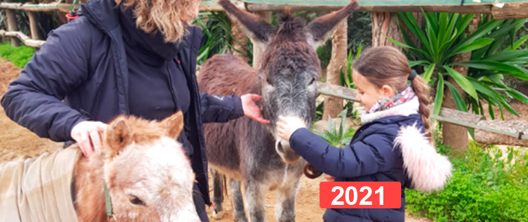 Ayuda a niños para la reparación del vínculo a través de la equinoterapia 2021