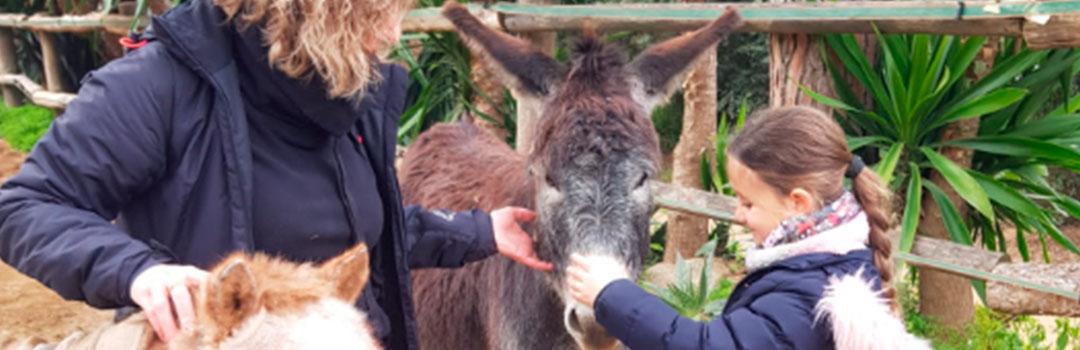 niña y monitora con burros | ayuda a niños con equinoterapia